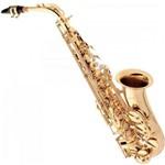 Ficha técnica e caractérísticas do produto Saxofone Alto Eb SA-501 Laqueado EAGLE