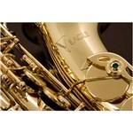 Ficha técnica e caractérísticas do produto Saxofone Sax Alto Eagle Sa 501 em Mib