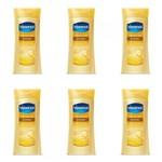 Ficha técnica e caractérísticas do produto Vasenol Nutrição Loção Hidratante 200ml (Kit C/06)