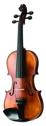 Ficha técnica e caractérísticas do produto Violino Michael Vnm49 4/4 - Ébano Series