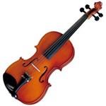 Ficha técnica e caractérísticas do produto Violino Tradicional Infantil 1/4 VNM10 Verniz Translucido Avermelhado - Michael